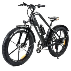 NAKTO GYL019 Direwolf LCD display Electric Bicycle - 500W Motor
