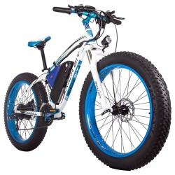 RICH BIT TOP-022 LCD Display Electric Mountain Bike - 1000W Motor